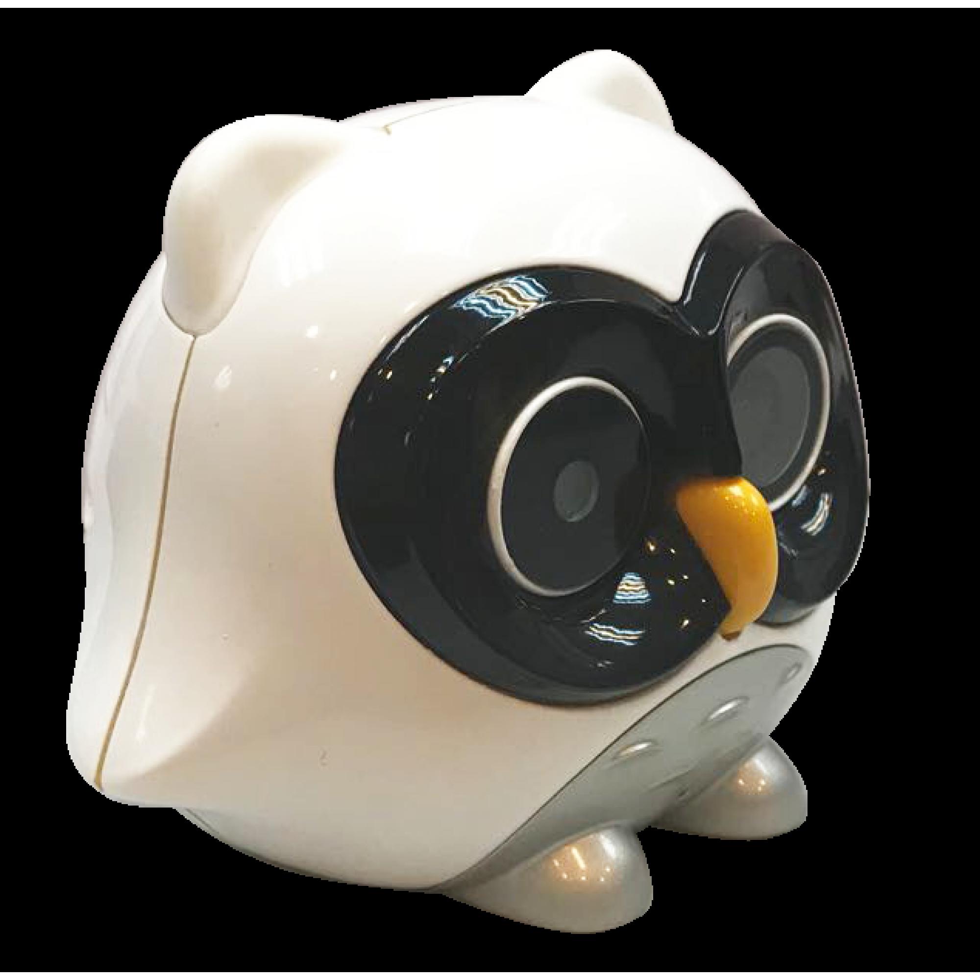 i Baby Owl Camera